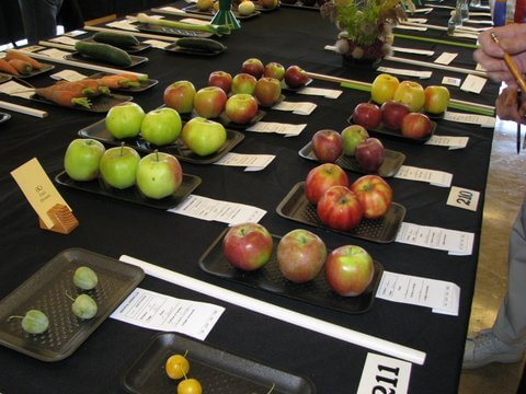Fall Flower Fruit & Veggie Show, and Plant Sale